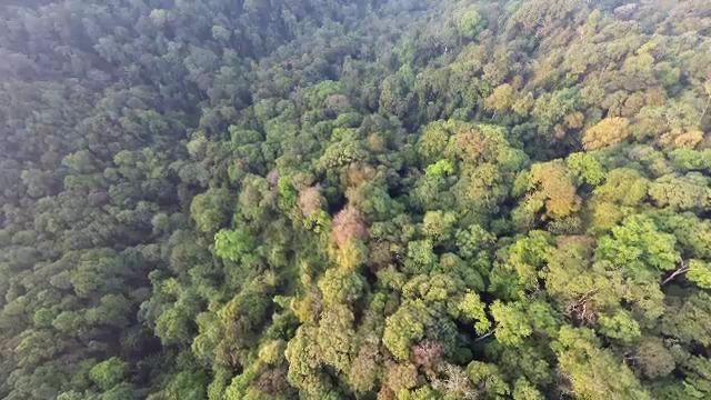 แม่วงก์ ผืนป่าแห่งความหวัง - ตอนที่ 1