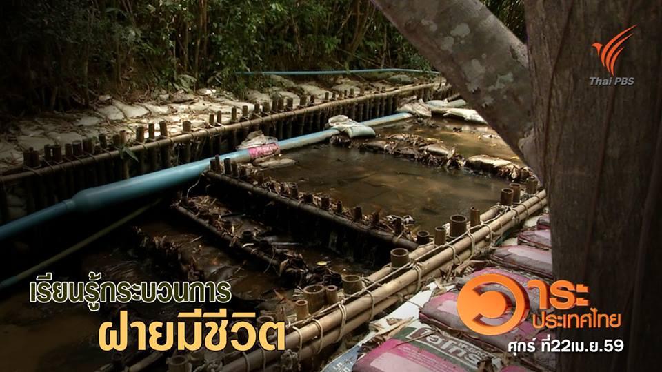 วาระประเทศไทย - เรียนรู้การสร้างฝายมีชีวิต