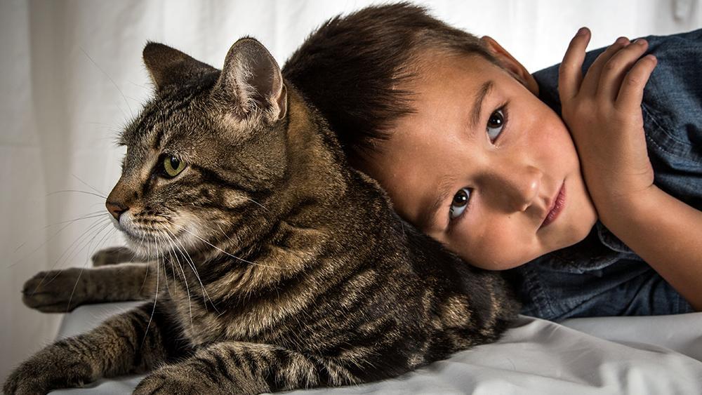 ท่องโลกกว้าง - เพื่อนซี้ต่างสายพันธุ์  ตอน  แมววีรบุรุษ