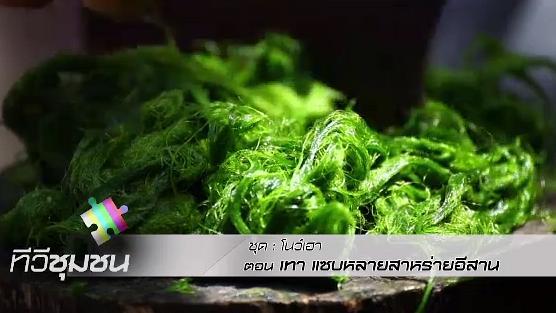 ทีวีชุมชน - เทา แซบหลายสาหร่ายอีสาน