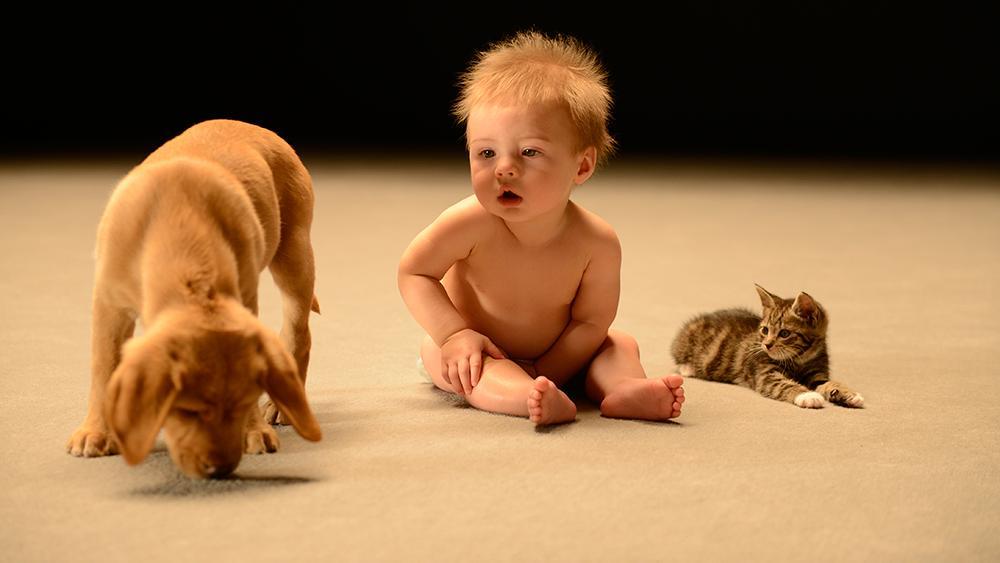 มิติโลกหลังเที่ยงคืน - มหัศจรรย์ความลับของทารก