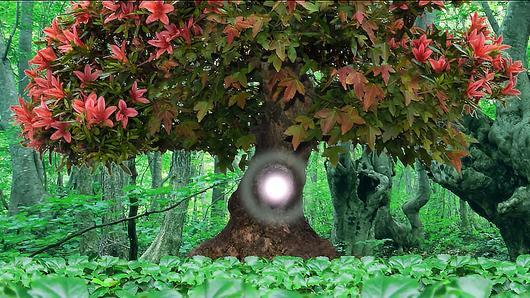 TataTitiToto ไดโนจอมป่วน - ต้นไม้จอมตะกละ