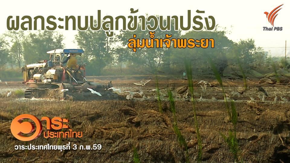 วาระประเทศไทย - ผลกระทบปลูกข้าวนาปรัง ลุ่มน้ำเจ้าพระยา