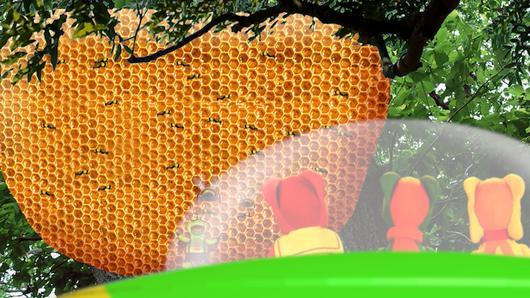 TataTitiToto ไดโนมหัศจรรย์ - มหัศจรรย์รังผึ้ง
