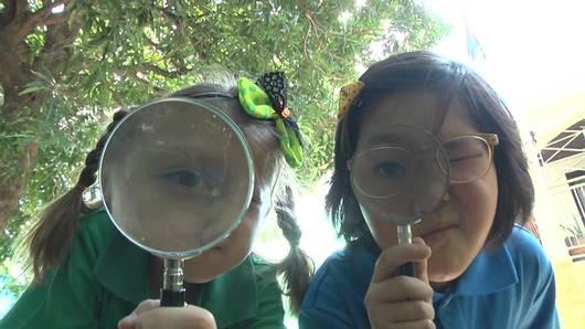 คิดวิทย์ Science Yard - แว่นขยาย (Tag Team)