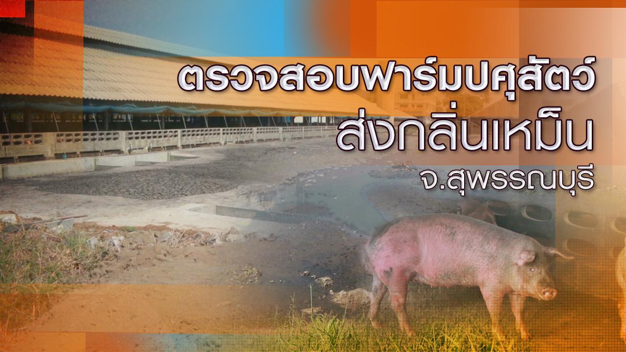 ร้องทุก(ข์) ลงป้ายนี้ - ตรวจสอบฟาร์มปศุสัตว์ส่งกลิ่นเหม็น จ.สุพรรณบุรี