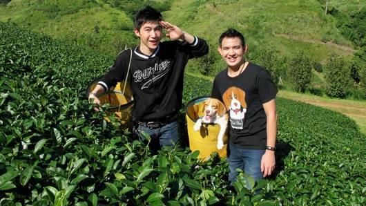 Foodwork - ปรุงเมนูจากใบชากับ ดีเจดอส
