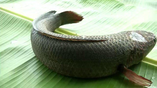 บรรเลงครัวทั่วไทย - จ.สิงห์บุรี