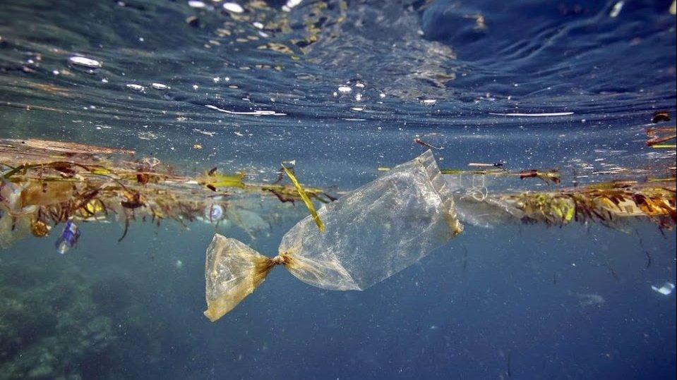 คิดส์ทันข่าว - ลดใช้ถุงพลาสติก