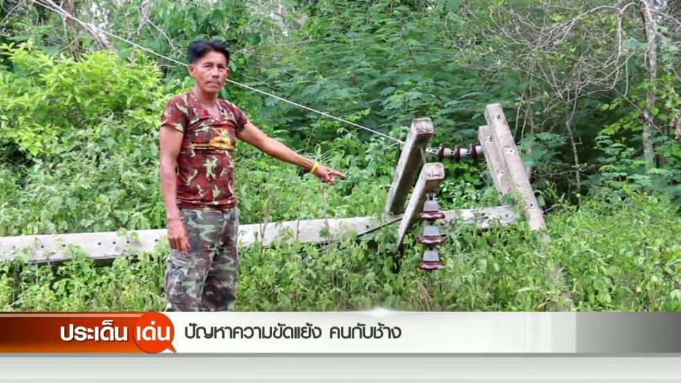 สถานีประชาชน - ปัญหาความขัดแย้ง คนกับช้าง