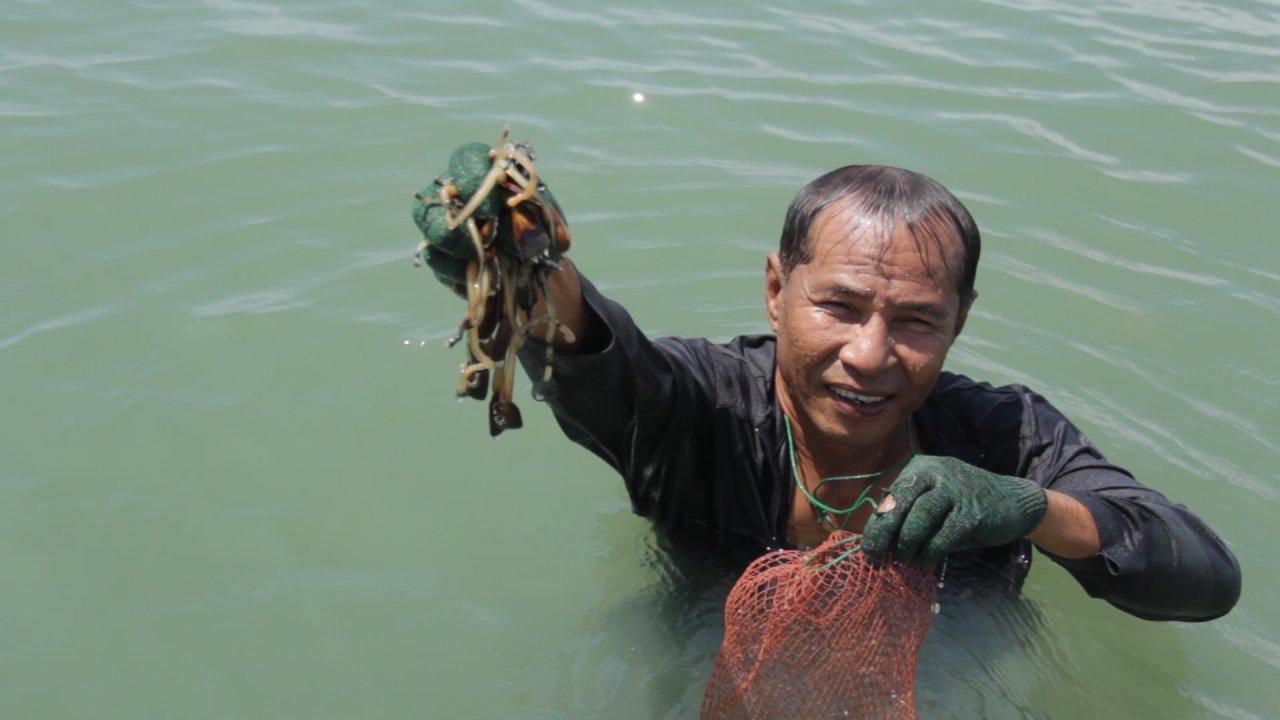 ทางนำชีวิต - คนหาปลา