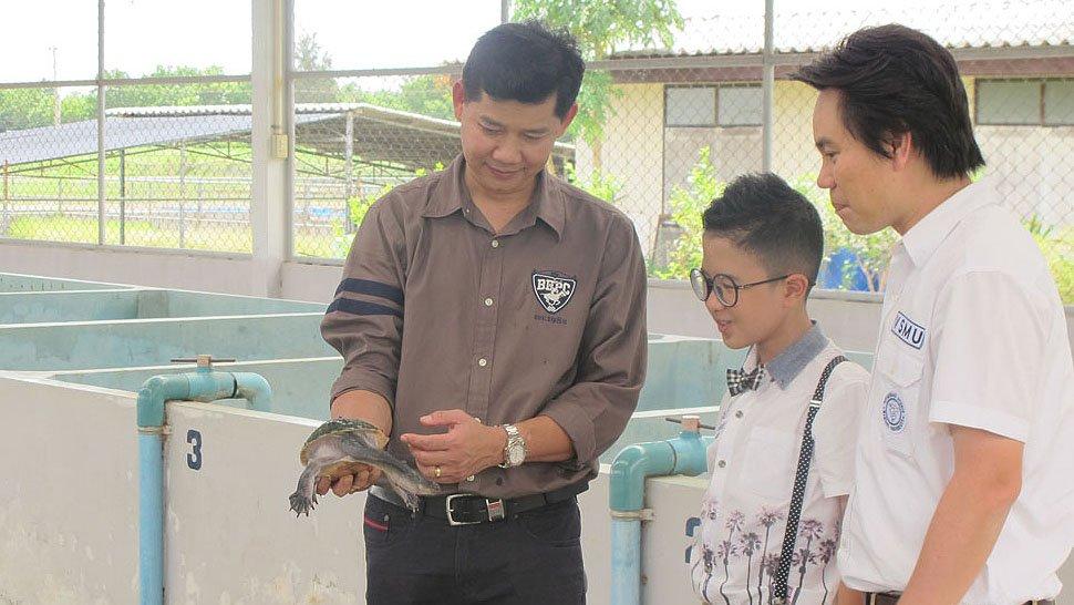 Animals Speak - ตะพาบสัญชาติไทยกับวิกฤติใกล้สูญพันธุ์