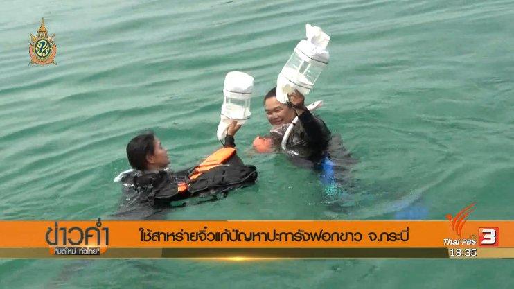 ข่าวค่ำ มิติใหม่ทั่วไทย - ประเด็นข่าว (20 มิ.ย. 59)