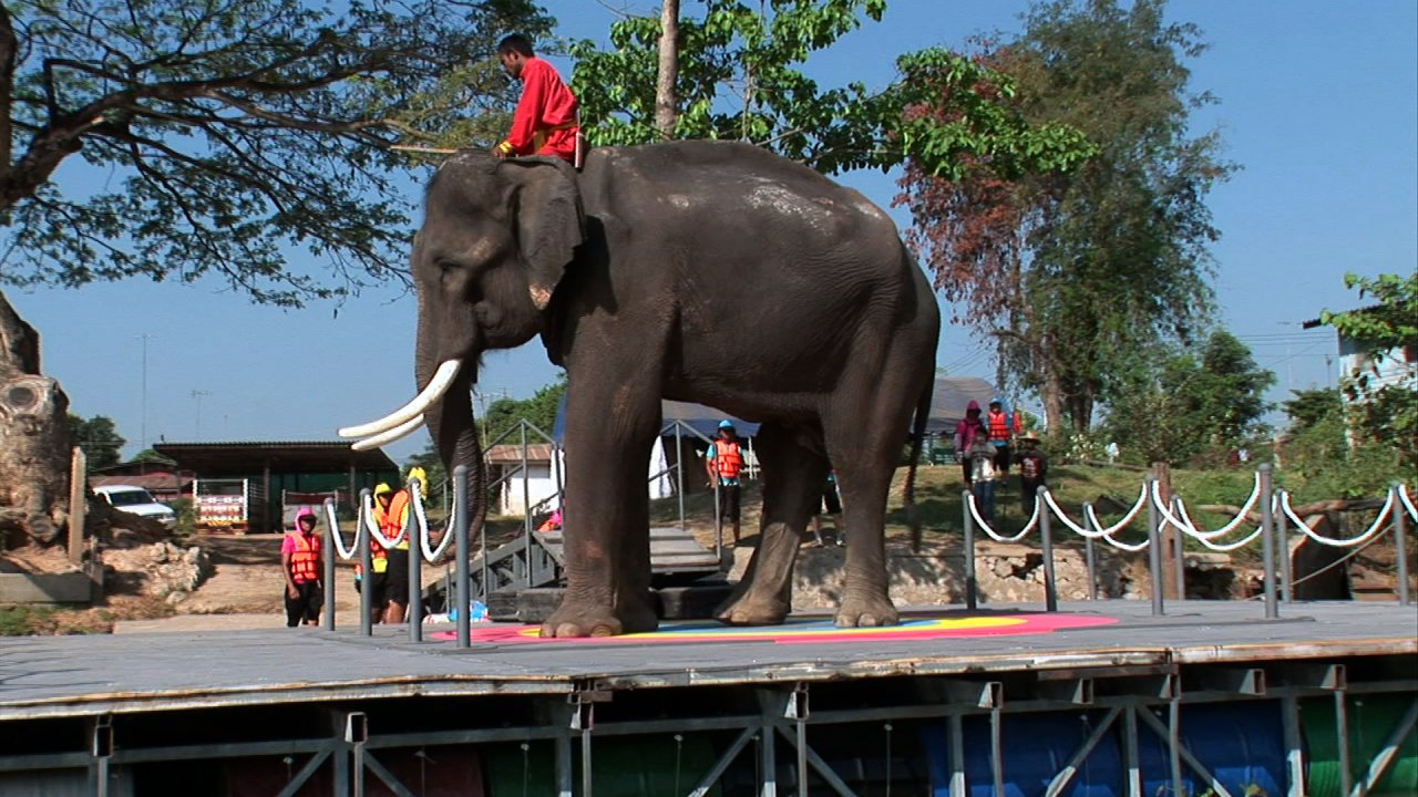 ท่องโลกกว้าง - ตื่นตากับวิทยาศาสตร์แสนสนุก  ตอน  ช้างหนักเท่าไร , นำแสงไปสู่ความมืด , เครื่องผลิตไฟฟ้าลวดกระโดด และ ใบพัดหนังยาง
