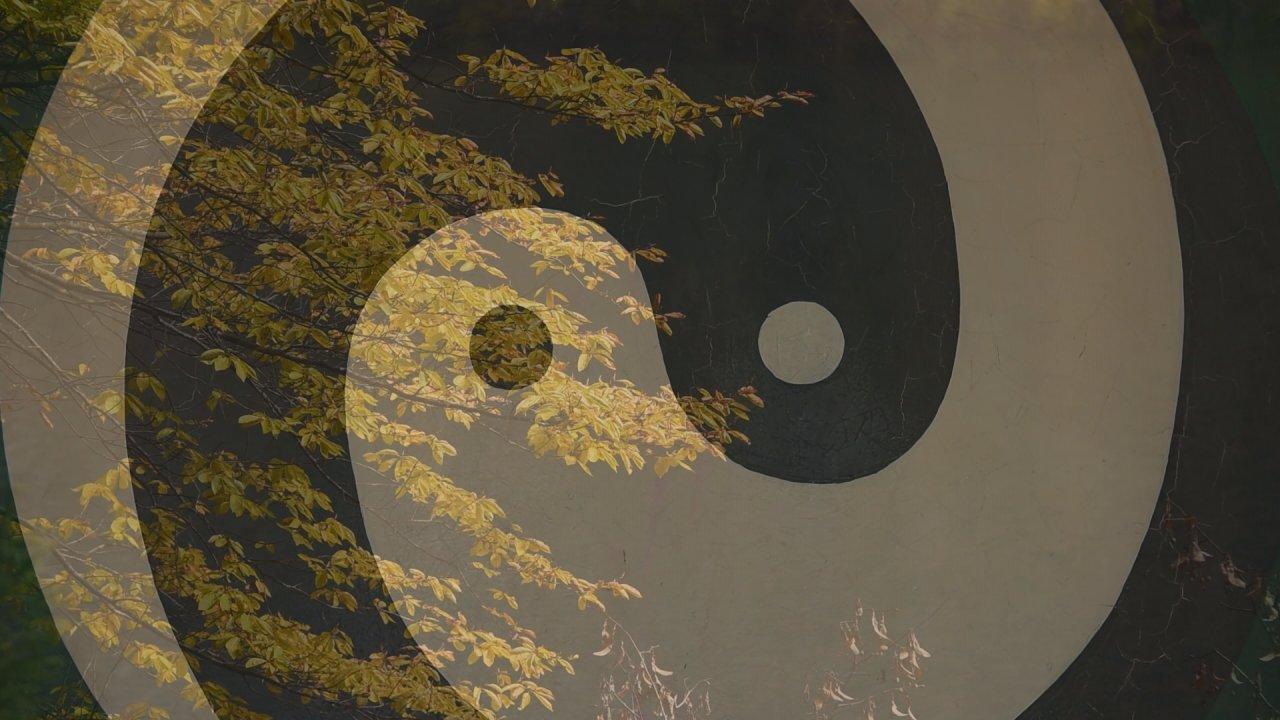 Spirit of Asia - สมดุลหยินหยาง