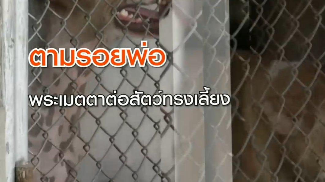 สถานีประชาชน - ตามรอยพ่อ : พระเมตตาต่อสัตว์ทรงเลี้ยง