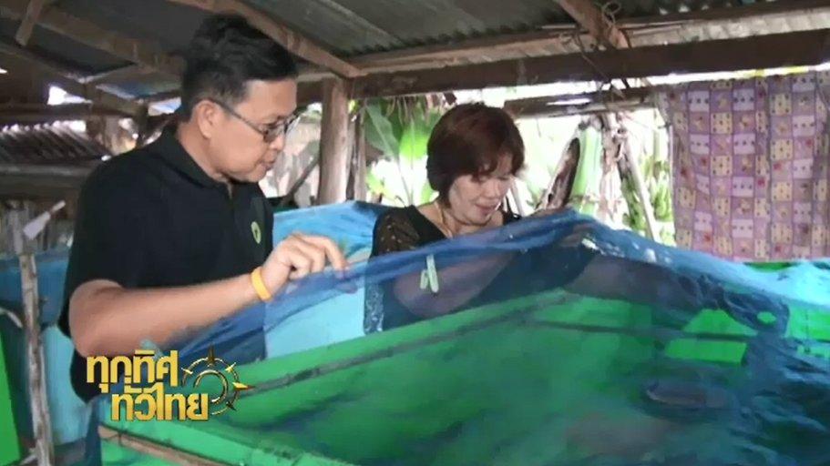 ทุกทิศทั่วไทย - ประเด็นข่าว ( 14 พ.ย. 59)
