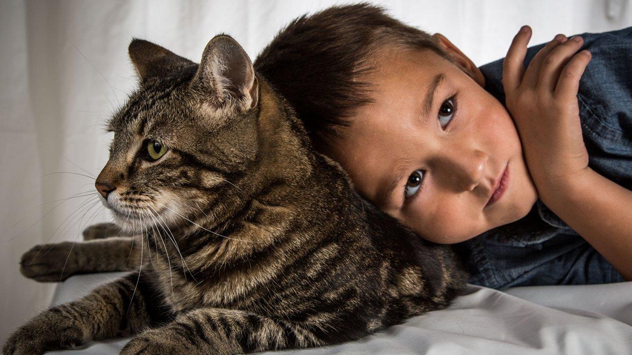 ท่องโลกกว้าง - เพื่อนซี้ต่างพันธุ์ ตอน แมววีรบุรุษ