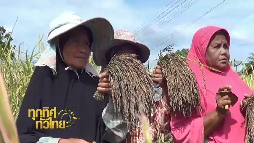 ทุกทิศทั่วไทย - ประเด็นข่าว ( 14 ก.พ. 60)