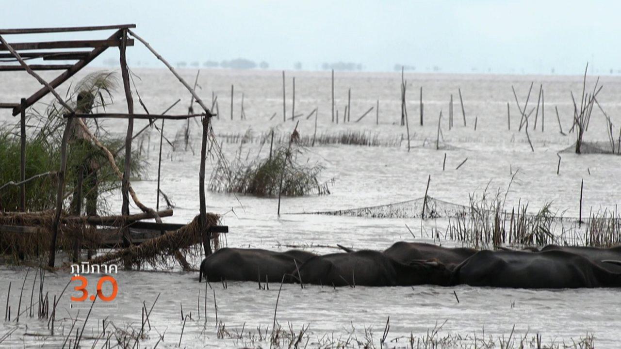 """ภูมิภาค 3.0 - ค.ควายเลน้อย : ชีวิตหลังน้ำท่วม, แม่น้ำและความทรงจำ """"ลำเซบก"""", ปลดล็อกอาชีพคนไร้สัญชาติ"""