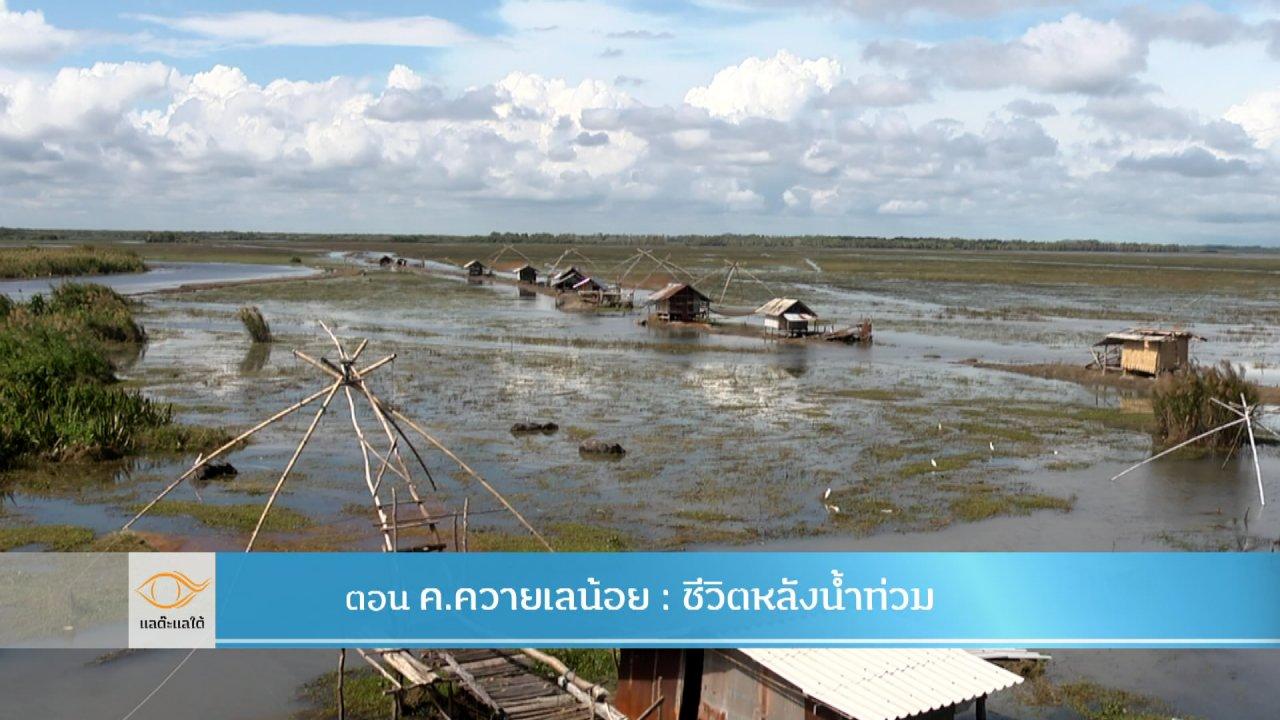 แลต๊ะแลใต้ - ค.ควายเลน้อย : ชีวิตหลังน้ำท่วม