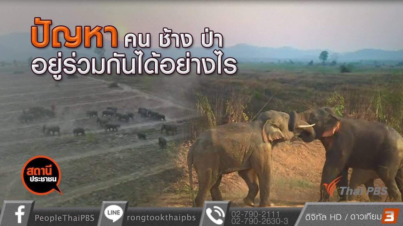 สถานีประชาชน - คน ช้าง ป่า อยู่ร่วมกันได้อย่างไร