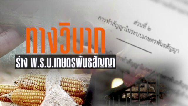 พลิกปมข่าว - ทางวิบาก ร่าง พ.ร.บ.เกษตรพันธสัญญา