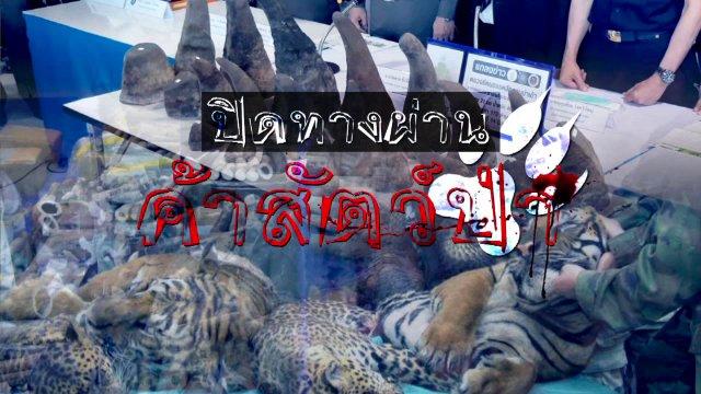 พลิกปมข่าว - ปิดทางผ่านค้าสัตว์ป่า
