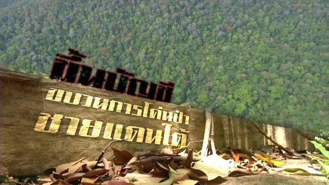 พลิกปมข่าว - ขึ้นบัญชีขบวนการโค่นป่าชายแดนใต้