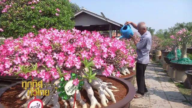 ทุกทิศทั่วไทย - ประเด็นข่าว (10 เม.ย. 60)