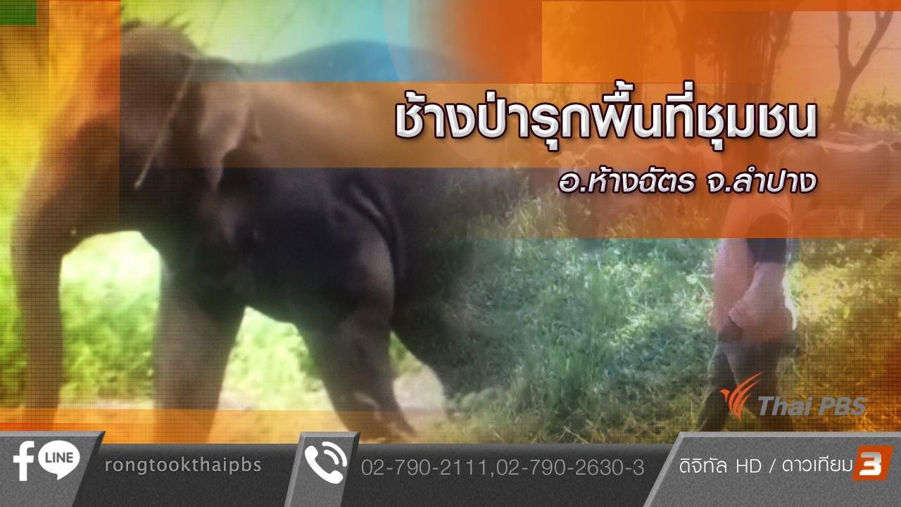 ร้องทุก(ข์) ลงป้ายนี้ - ช้างป่ารุกพื้นที่ชุมชน อ.ห้างฉัตร จ.ลำปาง
