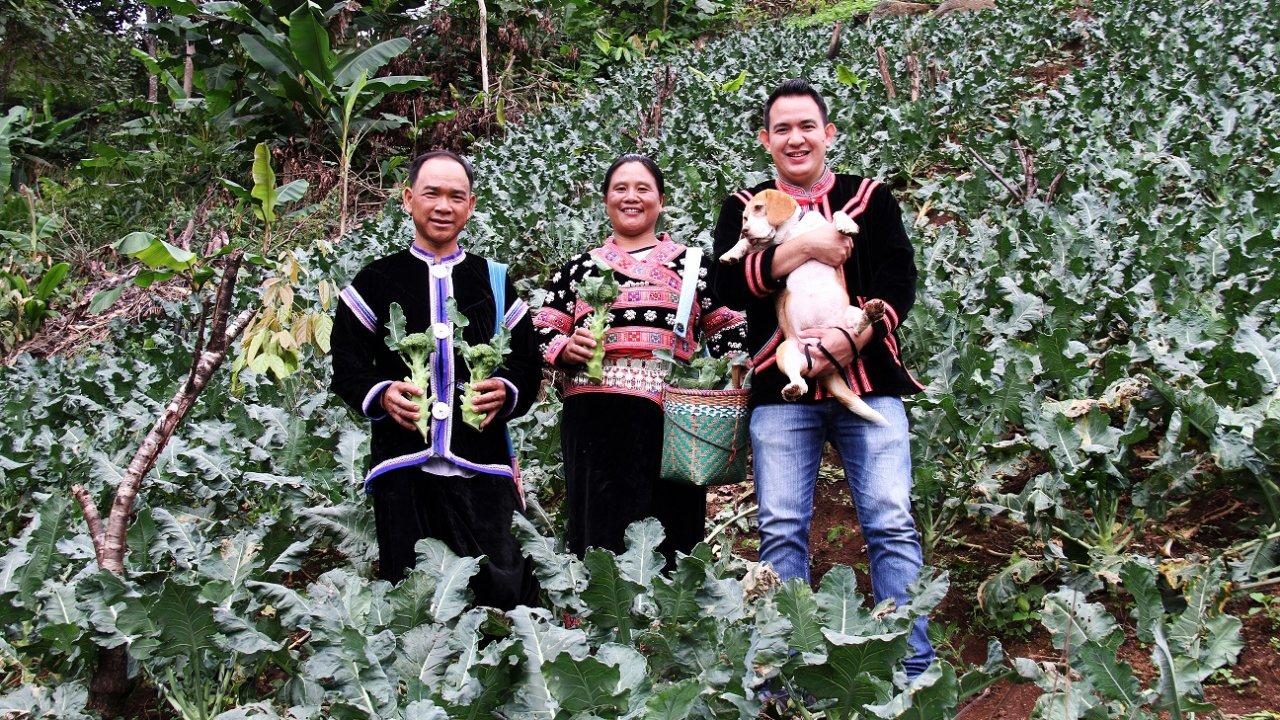 Foodwork - ศูนย์พัฒนาโครงการหลวงแม่ปูนหลวง