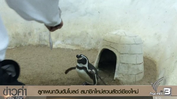 ข่าวค่ำ มิติใหม่ทั่วไทย - ประเด็นข่าว (21 ธ.ค. 59)