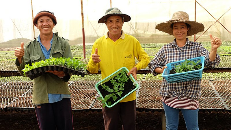 """เที่ยวไทยไม่ตกยุค - """"ของขวัญจากผืนแผ่นดิน"""" อ.ปง  จ.พะเยา"""