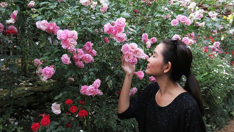 เที่ยวไทยไม่ตกยุค - หางดง – สะเมิง เส้นทางแห่งความสุข จ.เชียงใหม่