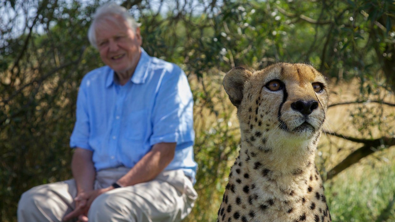 โลกหลากมิติ - เจาะความลับของธรรมชาติ ตอน สัตว์โลกจอมพลัง และ สัตว์โลกเจ้าปัญญา
