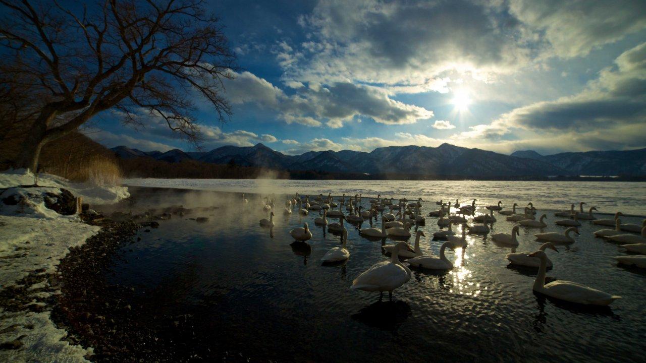 ท่องโลกกว้าง - มหัศจรรย์ธรรมชาติญี่ปุ่น ตอน เกาะฮอกไกโด