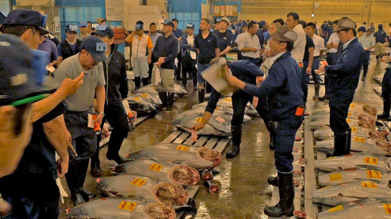 ท่องโลกกว้าง - ตะลุยสึกิจิ – ตลาดปลาใหญ่ที่สุดในโลก