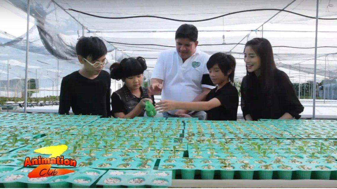 Animation Club Z - เกษตรกรปลูกผักกลางกรุง