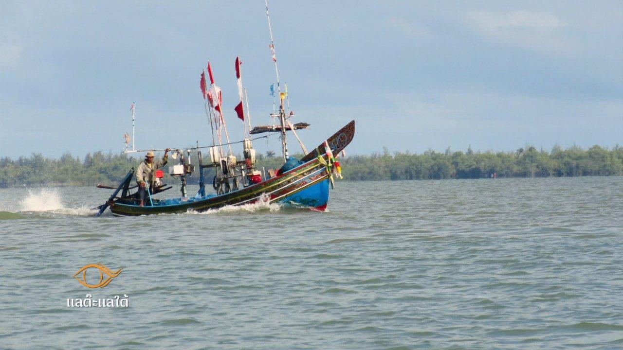 ภูมิภาค 3.0 - ของดีเมืองเหนือ, ดาโต๊ะ หมู่บ้านสองทะเล, เขตปลอดหนี้ ที่คำปลาหลาย