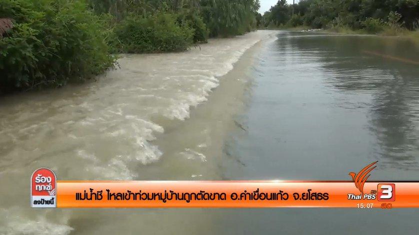 ร้องทุก(ข์) ลงป้ายนี้ - แม่น้ำชี ไหลเข้าท่วมหมู่บ้านถูกตัดขาด อ.คำเขื่อนแก้ว จ.ยโสธร