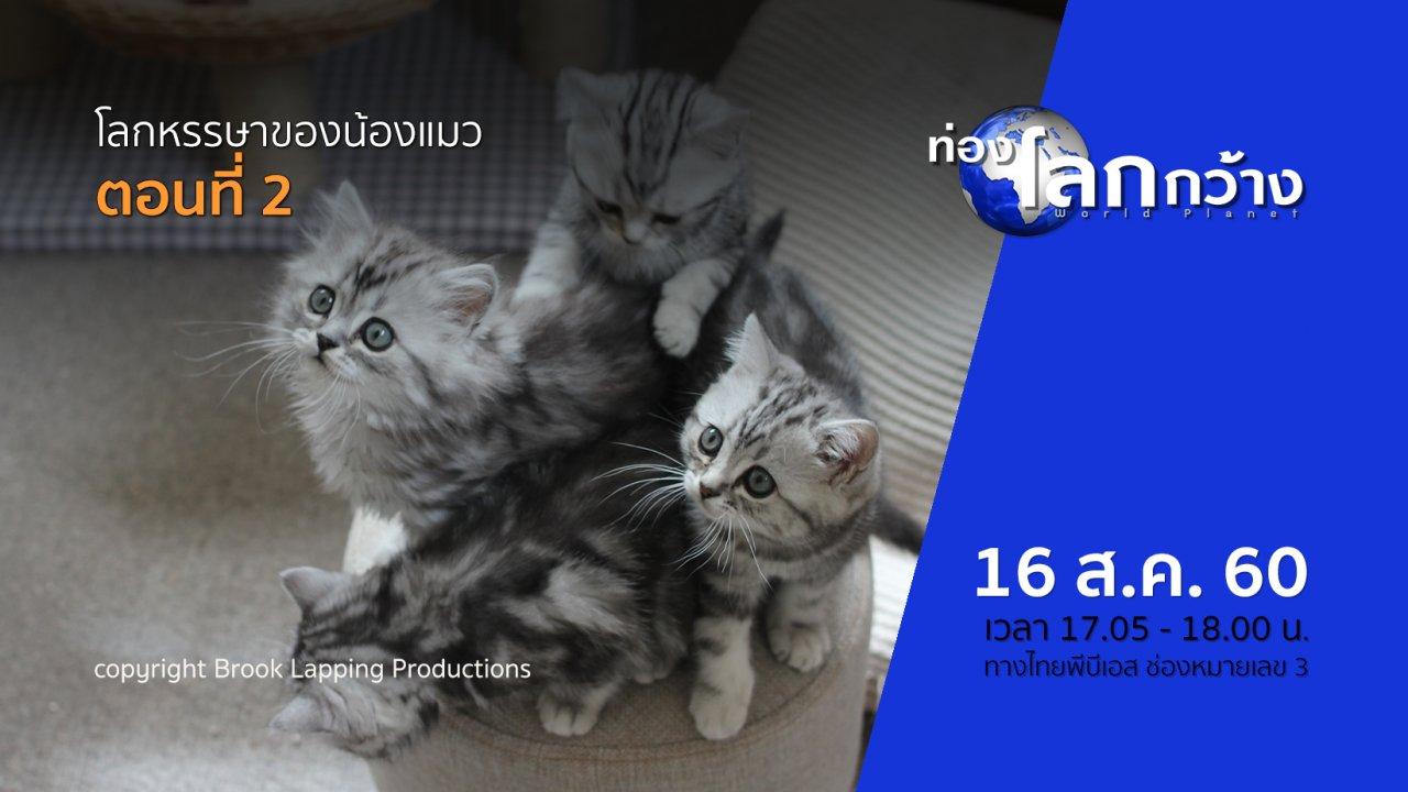 ท่องโลกกว้าง - โลกหรรษาของน้องแมว ตอนที่ 2