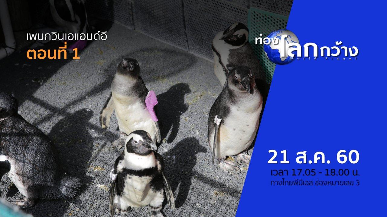 ท่องโลกกว้าง - เพนกวินเอแอนด์อี ตอนที่ 1