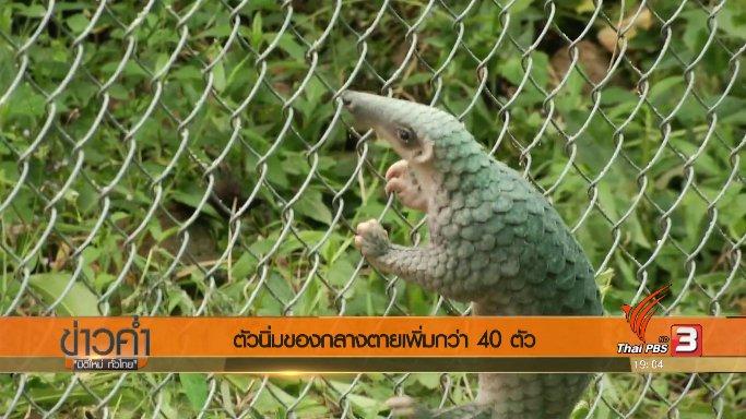 ข่าวค่ำ มิติใหม่ทั่วไทย - ประเด็นข่าว (2 ก.ย. 60)