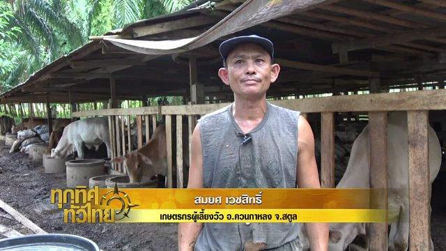 ทุกทิศทั่วไทย - ประเด็นข่าว (11 ก.ย. 60)