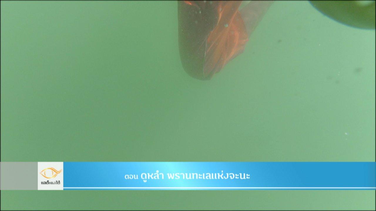 แลต๊ะแลใต้ - ดูหลำ วิชาฟังเสียงปลา