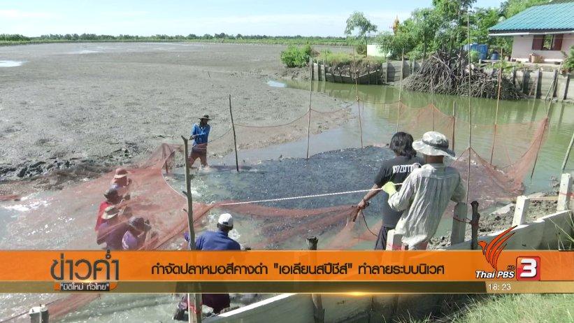 ข่าวค่ำ มิติใหม่ทั่วไทย - ประเด็นข่าว (6 ก.ค. 60)