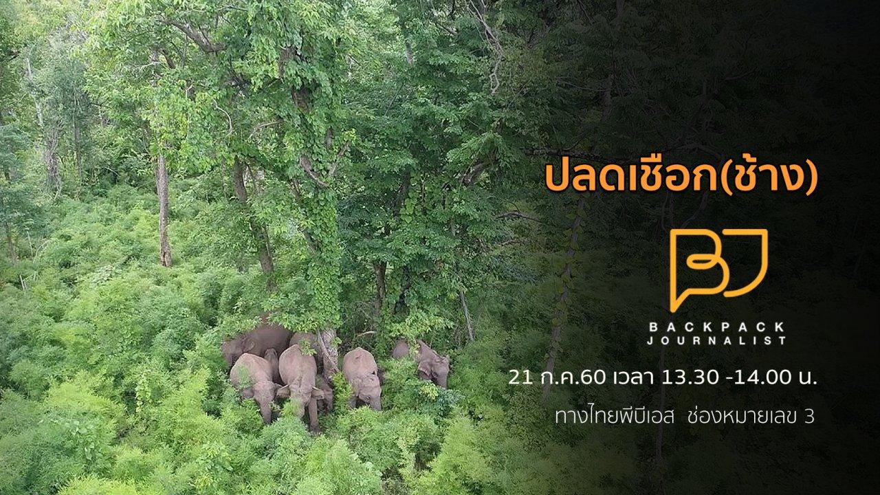 Backpack Journalist - ปลดเชือก(ช้าง)