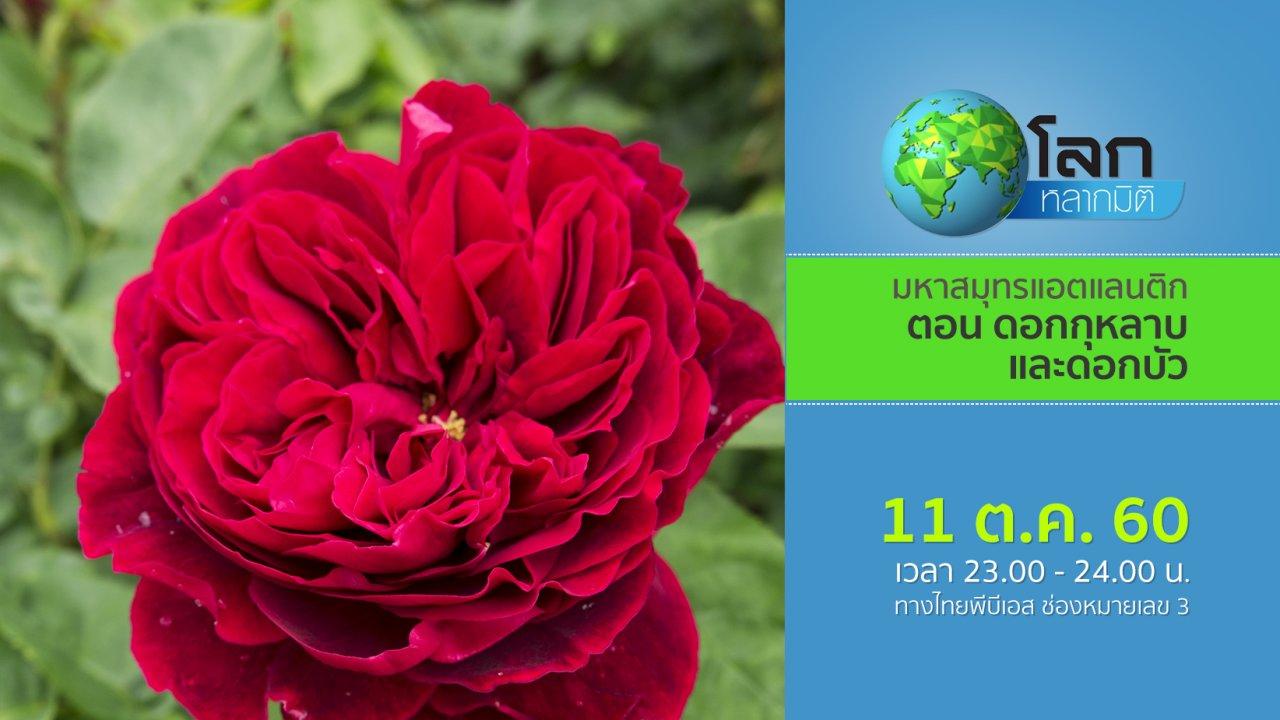 โลกหลากมิติ - มหากาพย์ดอกไม้โลก ตอน ดอกกุหลาบและดอกบัว