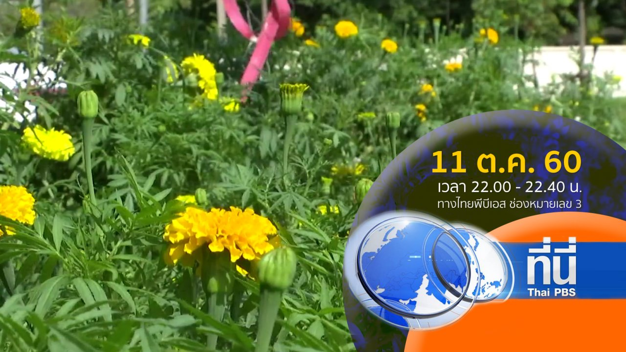 ที่นี่ Thai PBS - ประเด็นข่าว ( 11 ต.ค. 60)